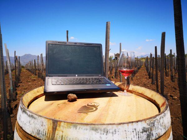 agenzia di comunicazione vino cibo sicilia
